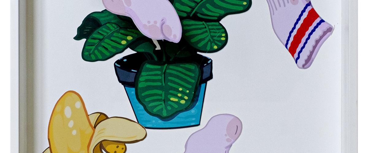 Herbarium Collection - Collection - 2021 - Eden Mitsenmacher