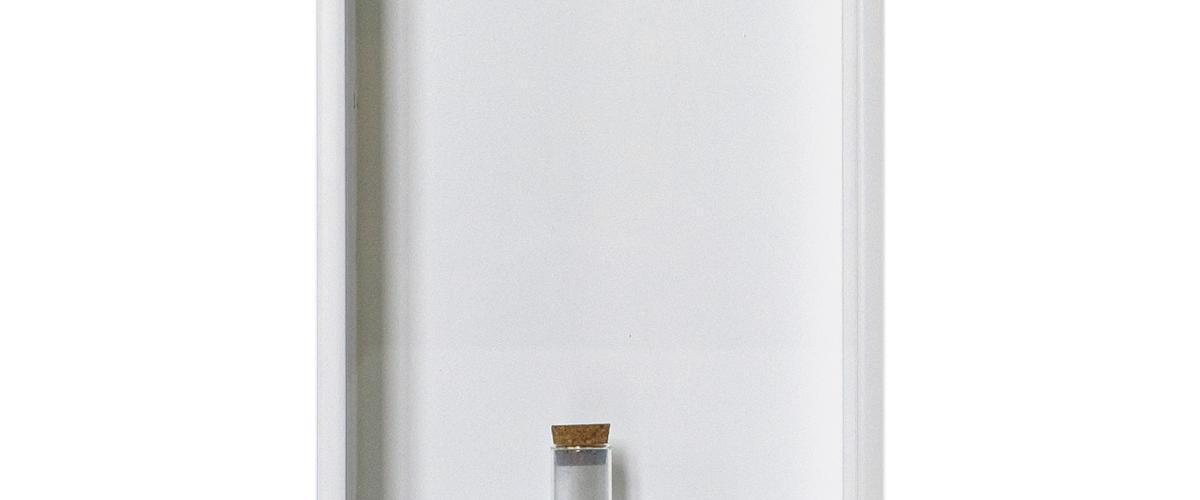 Herbarium Collection - Collection - 2021 - Boryana Petkova
